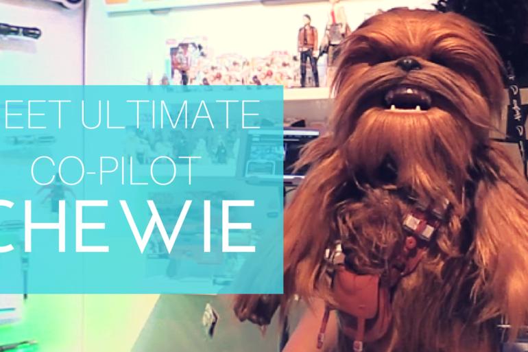 Meet Chewie