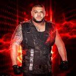 WWE2K19 Roster Akam
