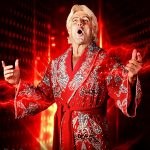 Ric Flair CE