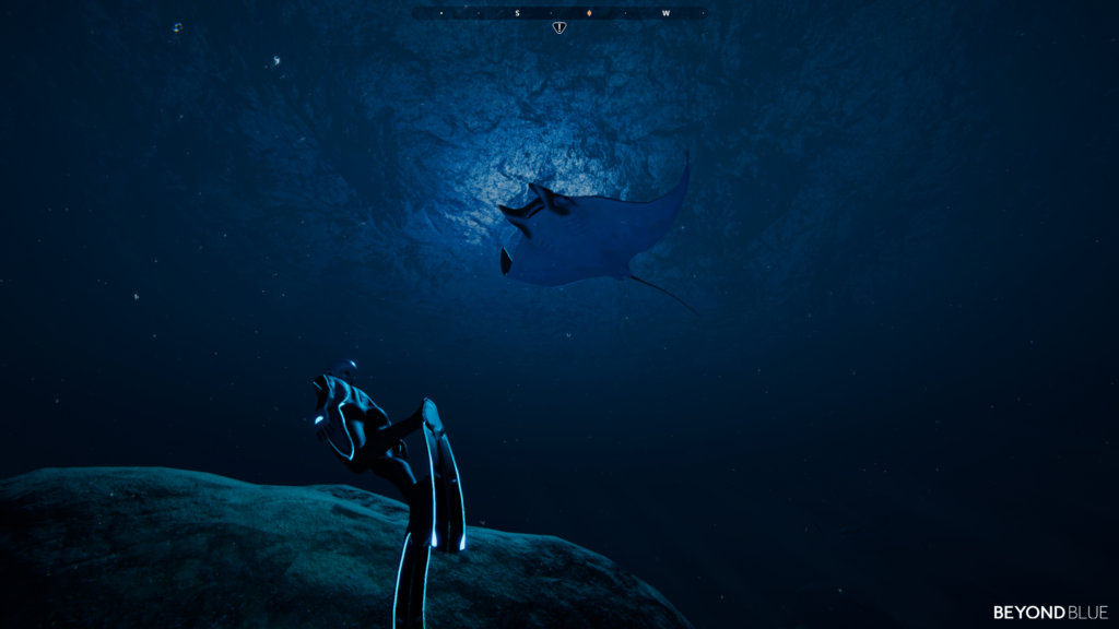 Beyond Blue - Manta