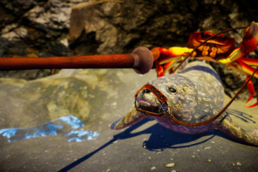 Fight Crab - Seal Joust